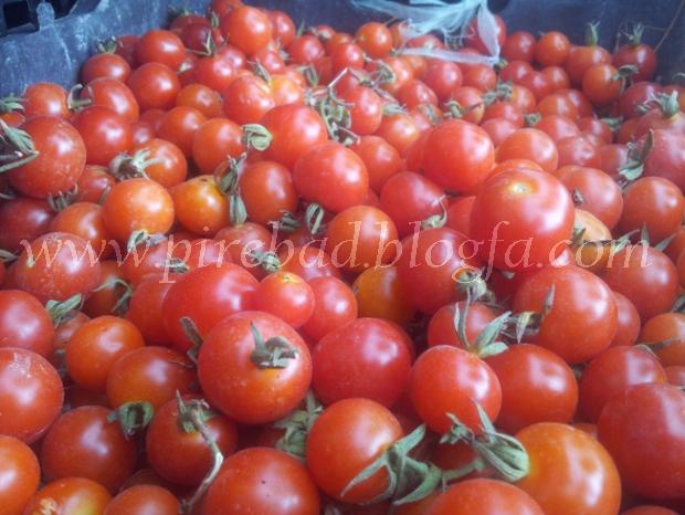 فارسیان / گوجه ریز